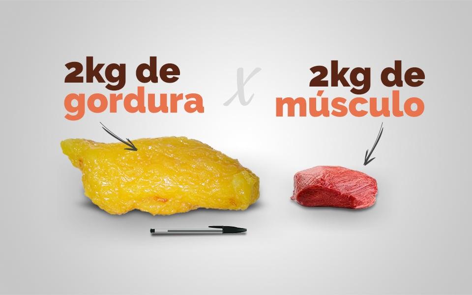 comparação entre o volume de 2kg de gordura e 2kg de músculo