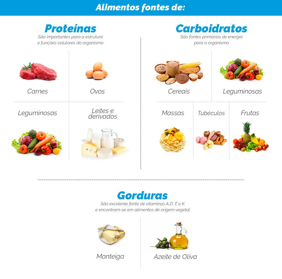 proteina_carboidrato_gorduras